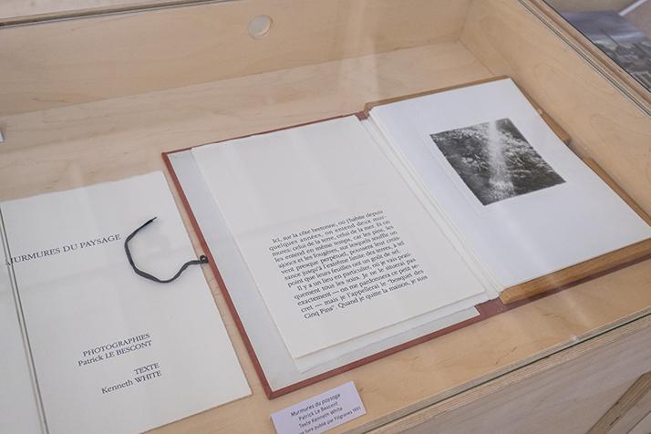 """""""Murmures du paysage"""", de Patrick Le Bescont • Texte de Kenneth White • Filigranes, 1991"""
