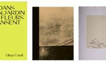 """Les 3 finalistes des Prix HiP 2019 • catégorie """"Monographie artistique"""""""